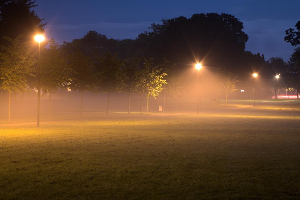 Nebelschwaden am Lentpark