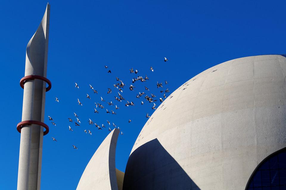Tauben über der Moschee
