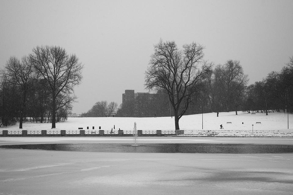Winter am Aachener Weiher