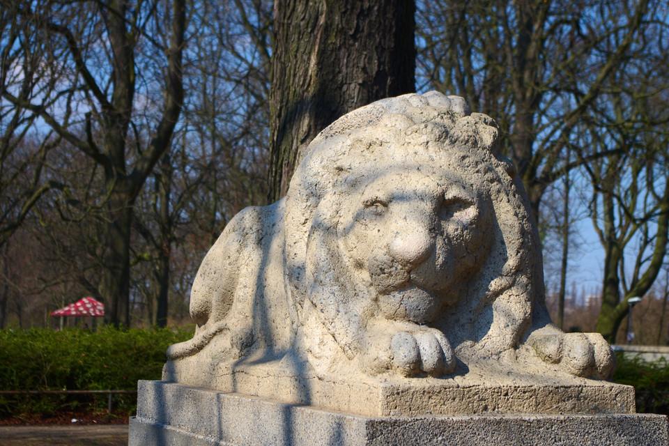 Löwe im Blücherpark