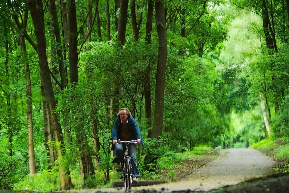 Radfahrerin auf dem Herkulesberg
